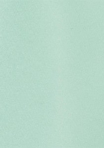 Modische Krawatte in mint
